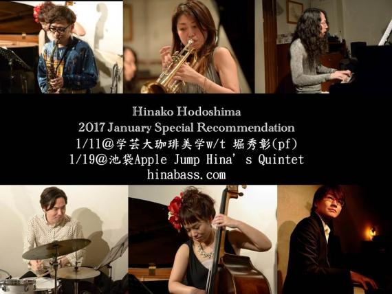 hinako-hodoshima